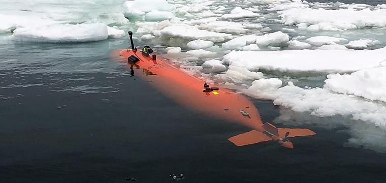 Robot in Antarctica